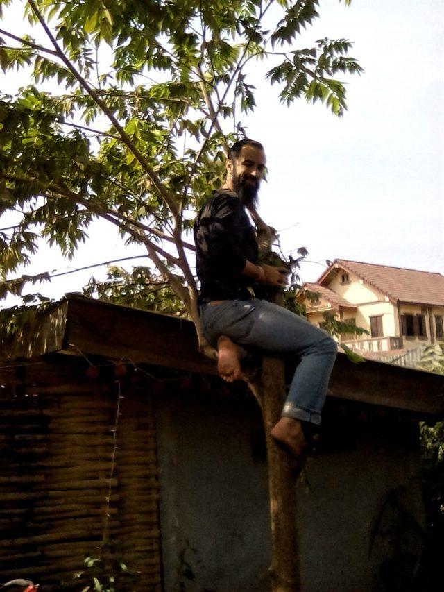 vie nomade laos arbre