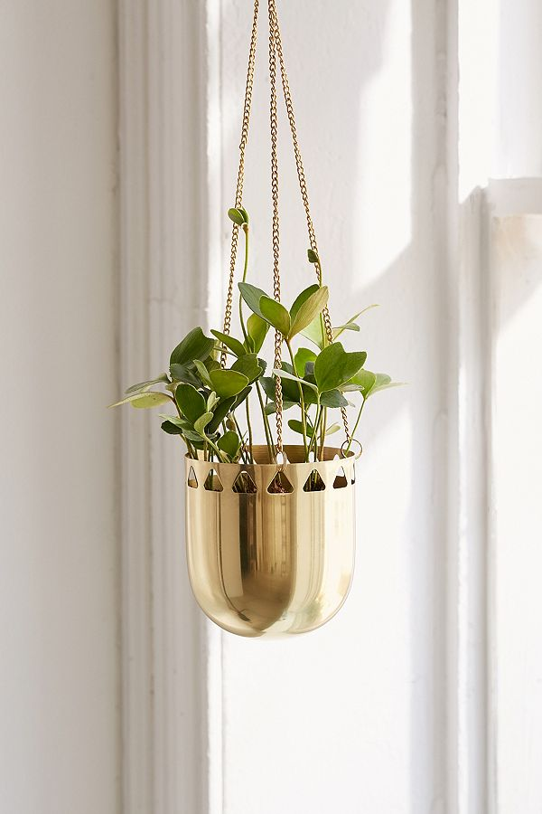 deco plante suspendues pot or