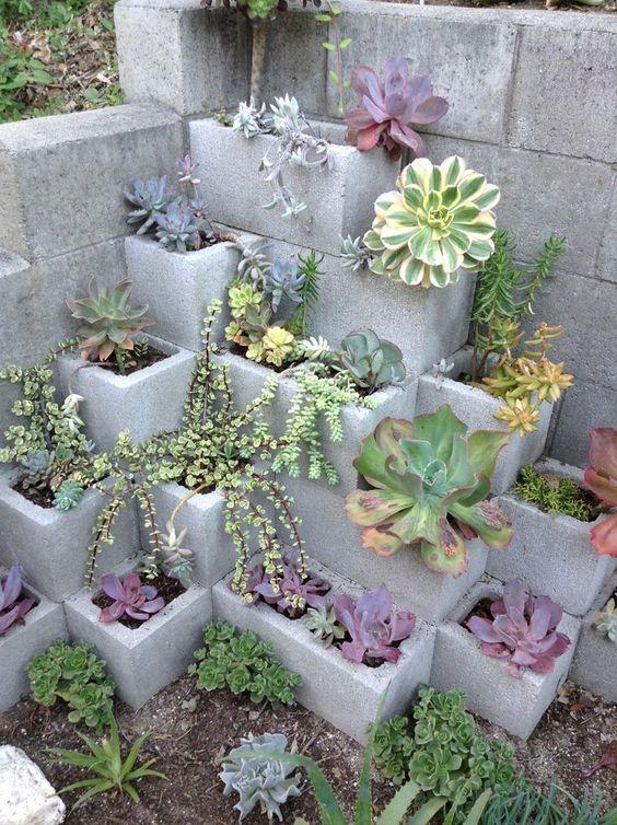 jardin deco maison diy plante