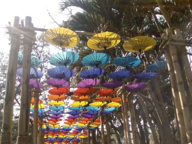 ombrelle chiang mai couleur