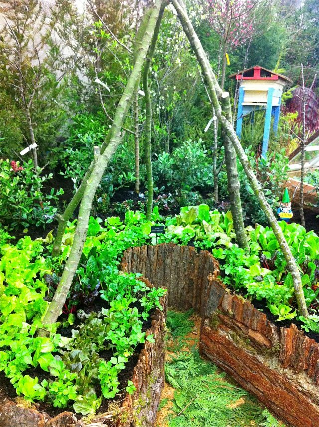 structure jardin permaculture plante