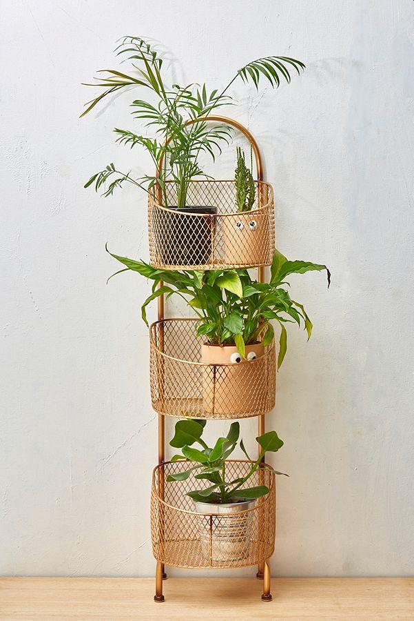 support deco plante