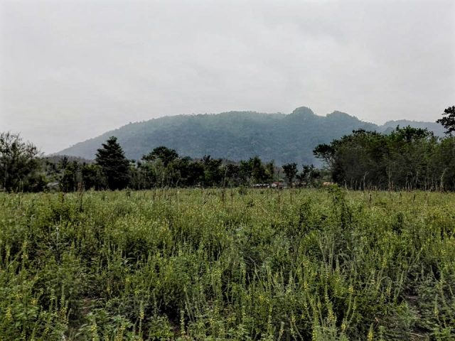 laos paysage nature nord luang prabang