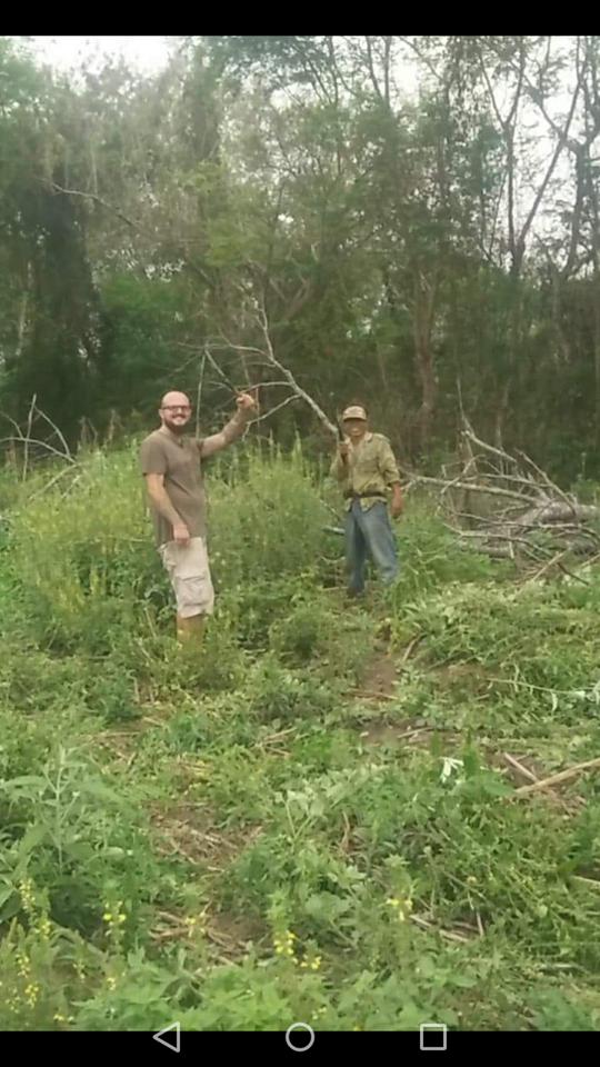 momo dans les champs
