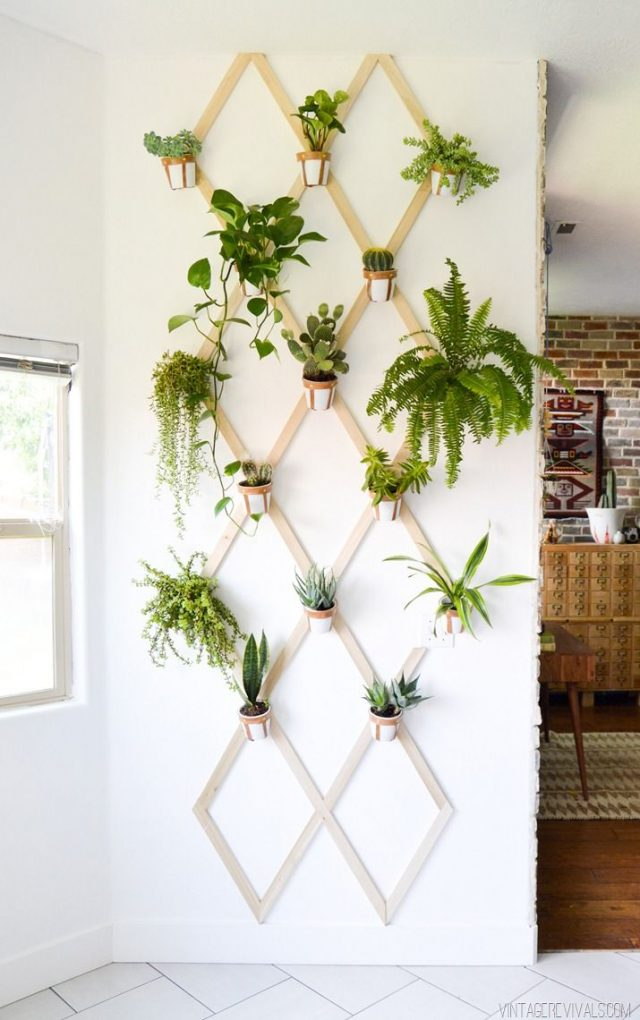 plante deco cuisine mur