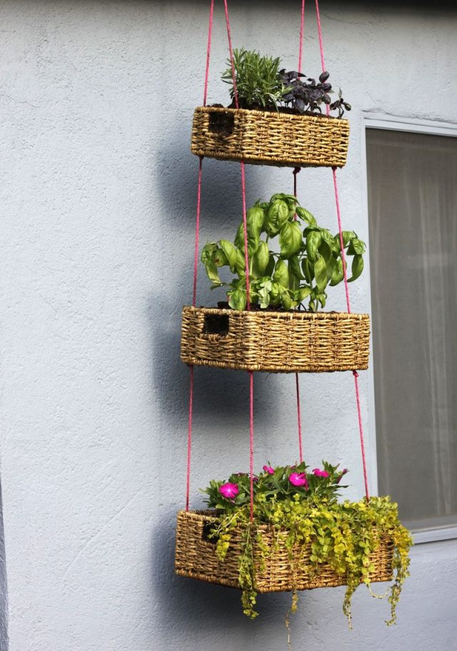 diy facile jardin plantes suspendues