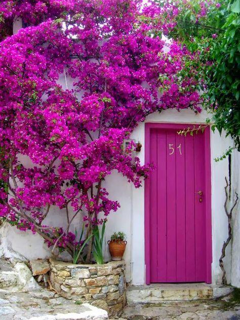 Comment mettre de la couleur dans votre jardin cocon d co vie nomade - Quand mettre du fumier dans son jardin ...