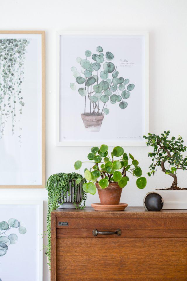 deco salon plante dessin affiche murale urban nature