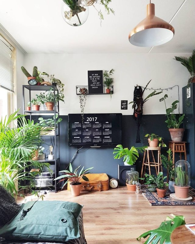 idee deco salon urban nature plante