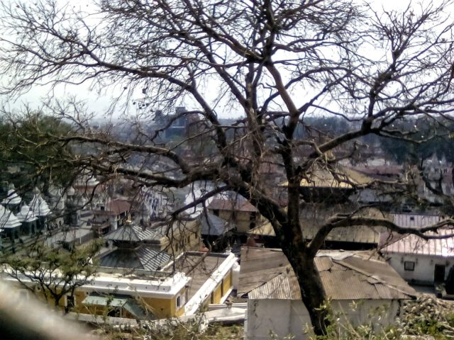 pashupatinath temple visite katamandou voyage