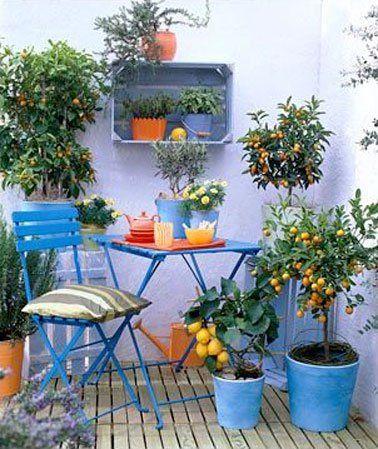 Comment mettre de la couleur dans votre jardin? | Cocon - déco & vie ...