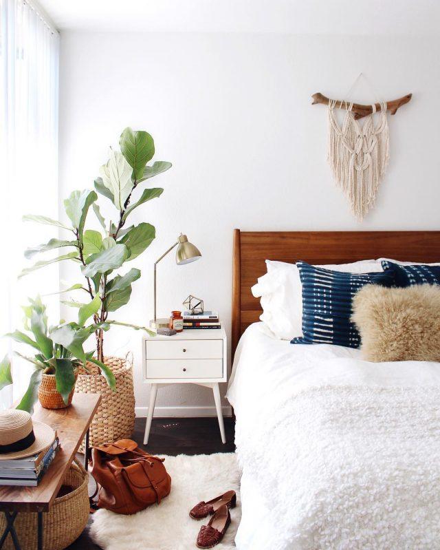 decoration idee chambre tendance plante
