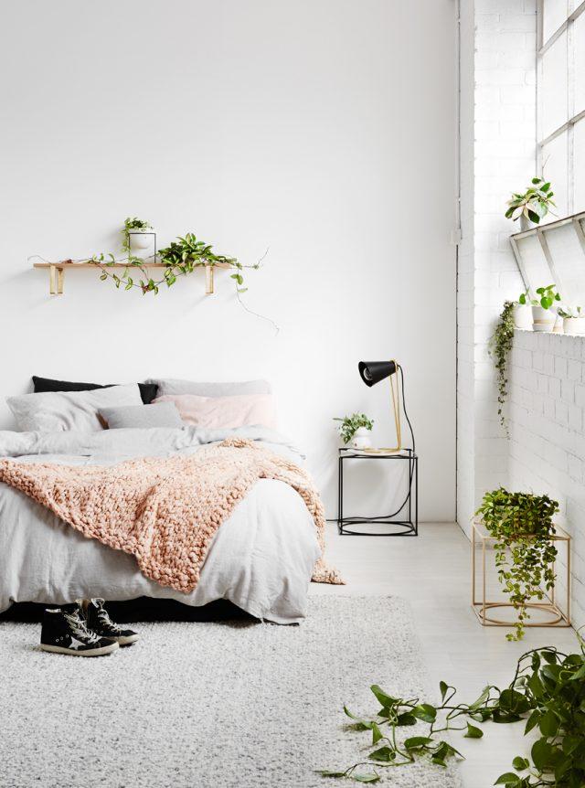 idee deco chambre minimaliste urban jungle plantes