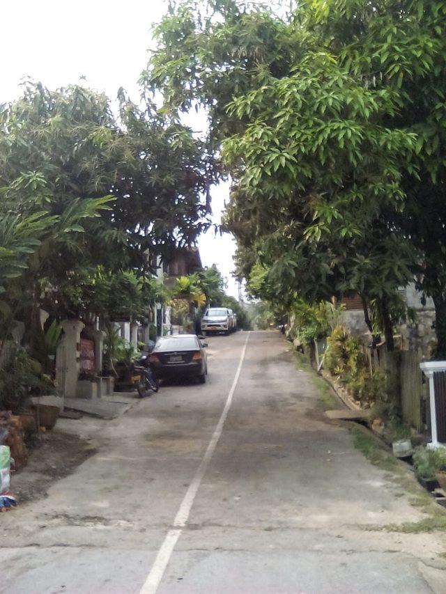 petite rue luang prabang laos