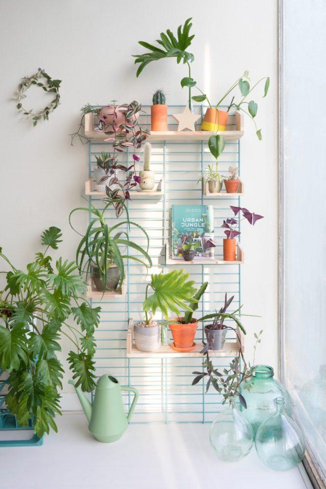 tendance decoration interieure plante 2019