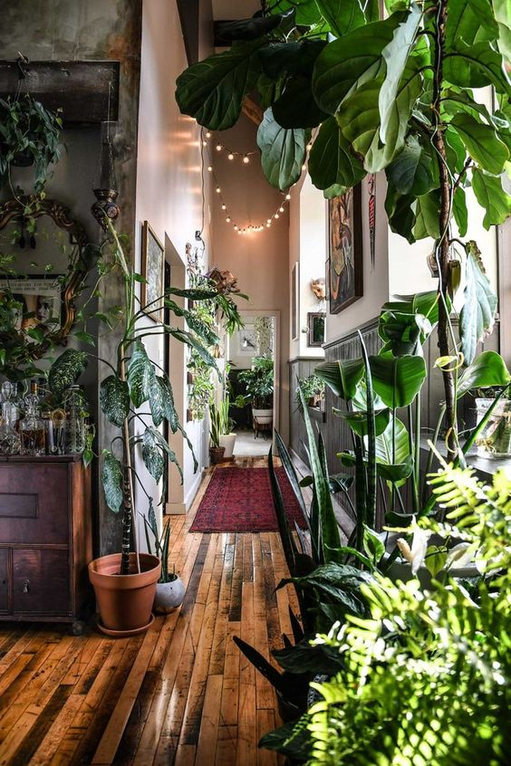 deco tendance urban jungle guide gratuit
