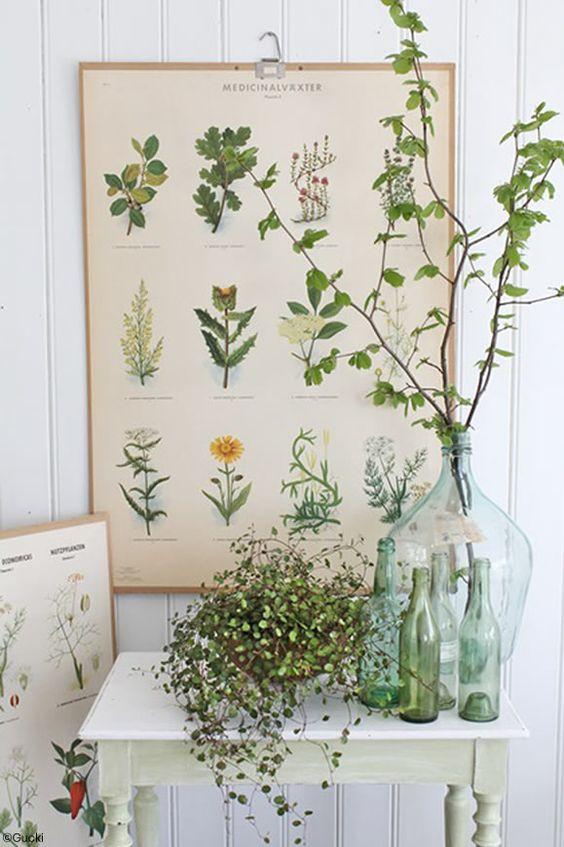 idee deco salle de bain vert plante bouteille