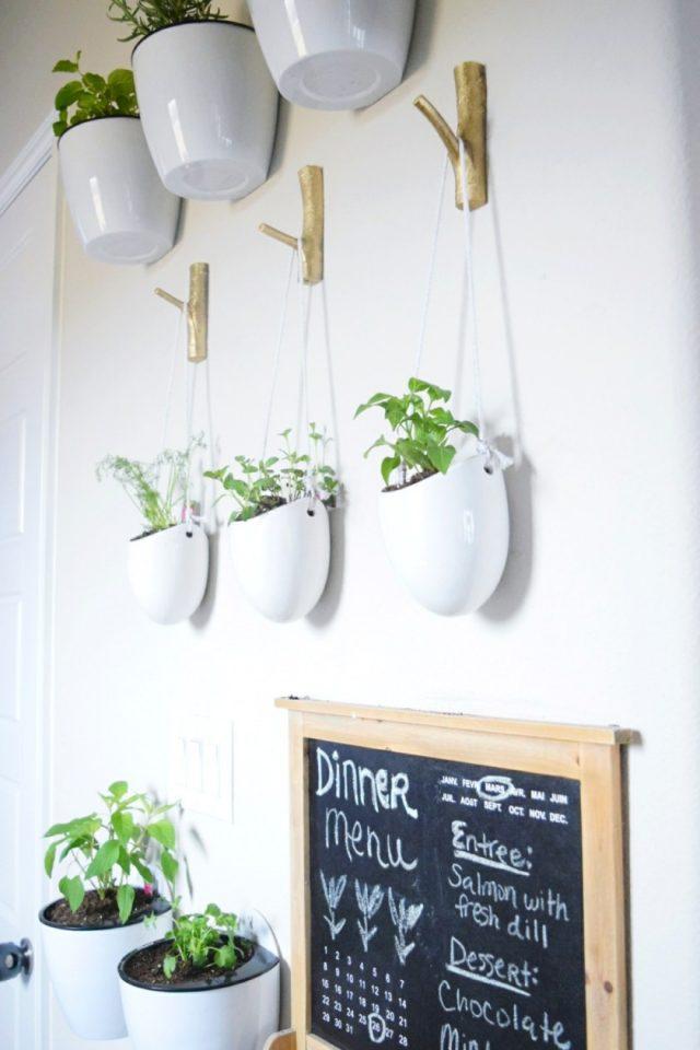 plantes suspendues facile cuisine