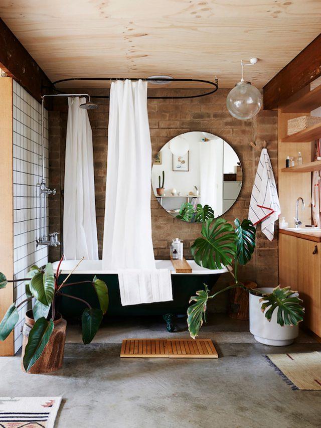 salle de bain bois plantes vertes