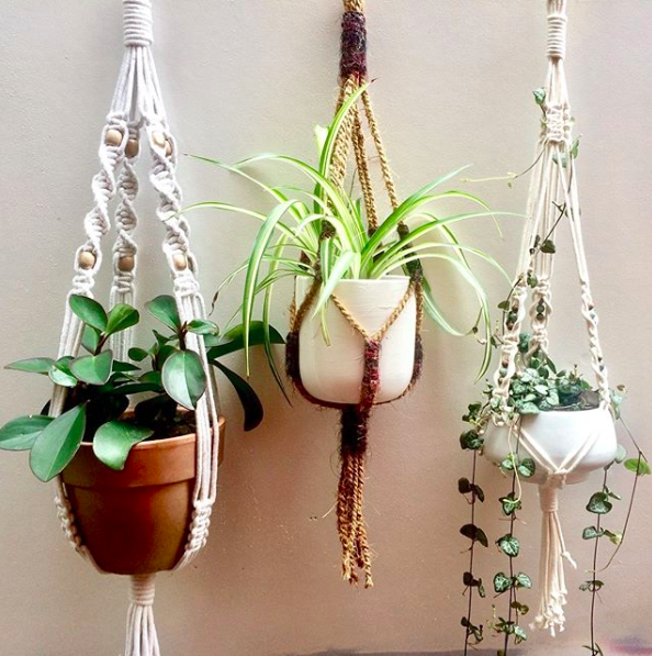 decoration idee plantes suspendues
