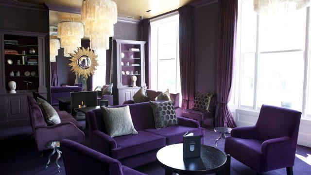 salon decoration violet sombre