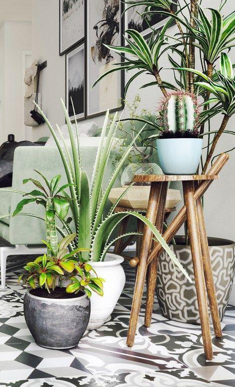 deco salon tabouret et plantes vertes exotiques