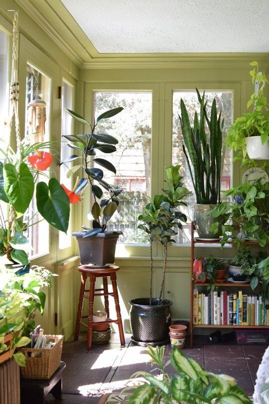 surelever plante tabouret fenetre