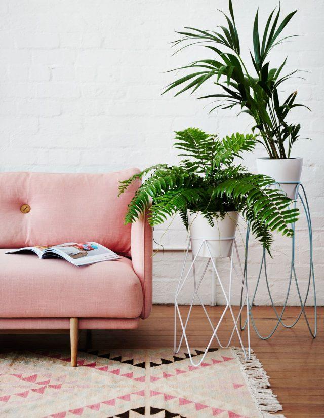 canape tapis rose et plante verte sur boute de canapé en métal ajouré ambiance féminine