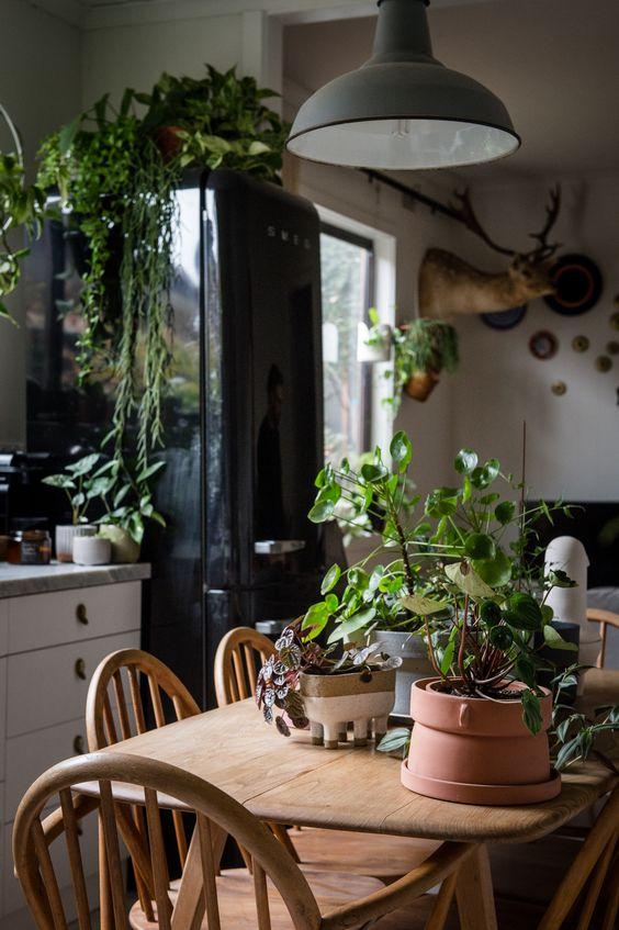 cuisine deco urban jungle plante bois