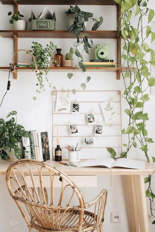 decorer le bureau avec des plantes 10