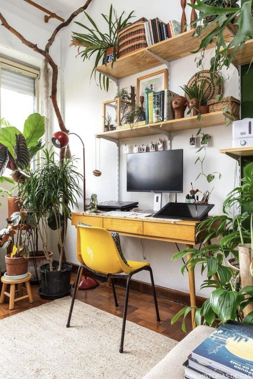 decorer le bureau avec des plantes 2