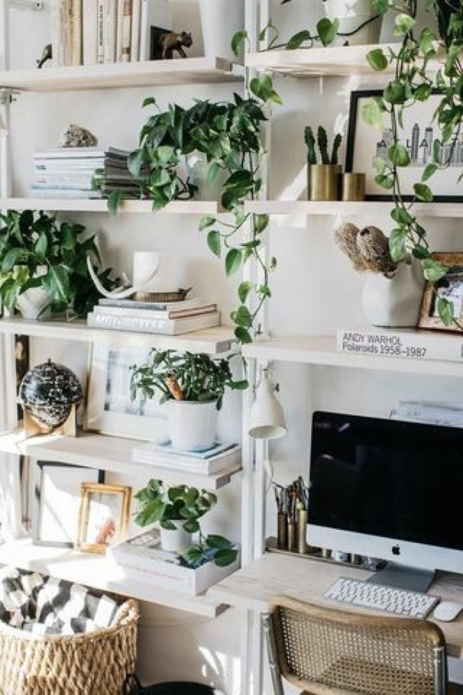 decorer le bureau avec des plantes 3