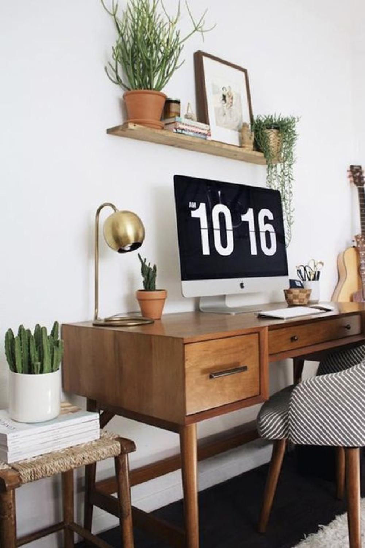 decorer le bureau avec des plantes 7