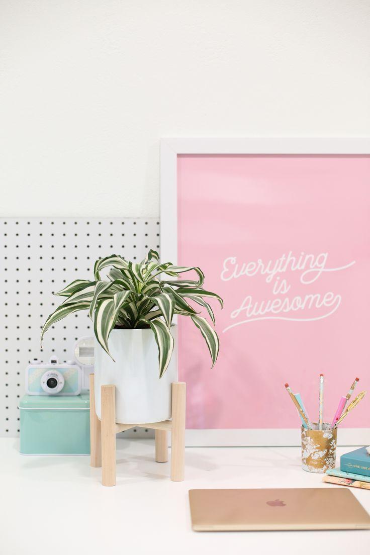 details deco plantes et cadre rose