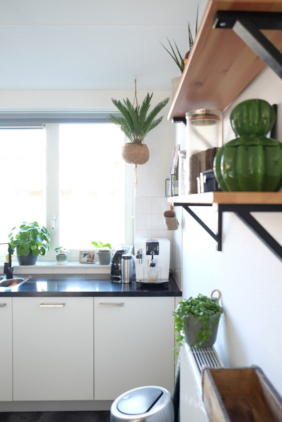 etagere bois cuisine deco plantes