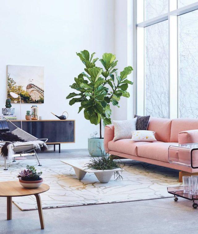 idee deco blanc rose plante salon séjour pièce à vivre lumière naturelle appartement plante angle près fenêtre
