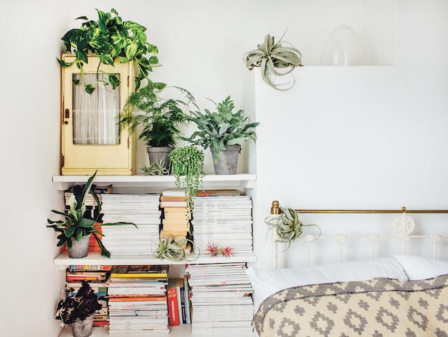 interieur deco urban jungle bienfait environnement maison