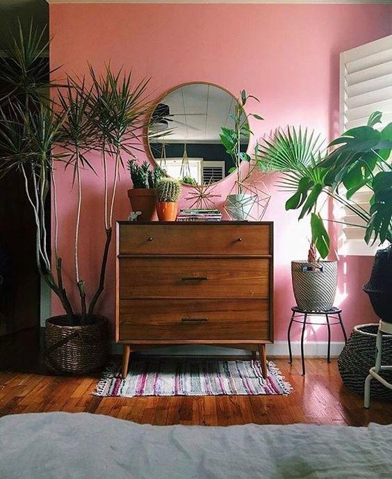 mobilier mid century plante et mur rose