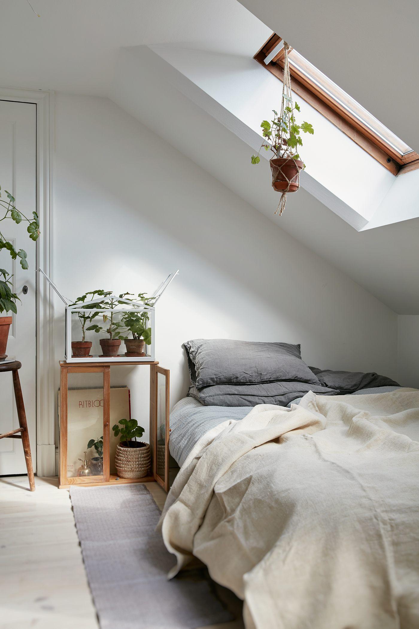 petite chambre minimaliste plante
