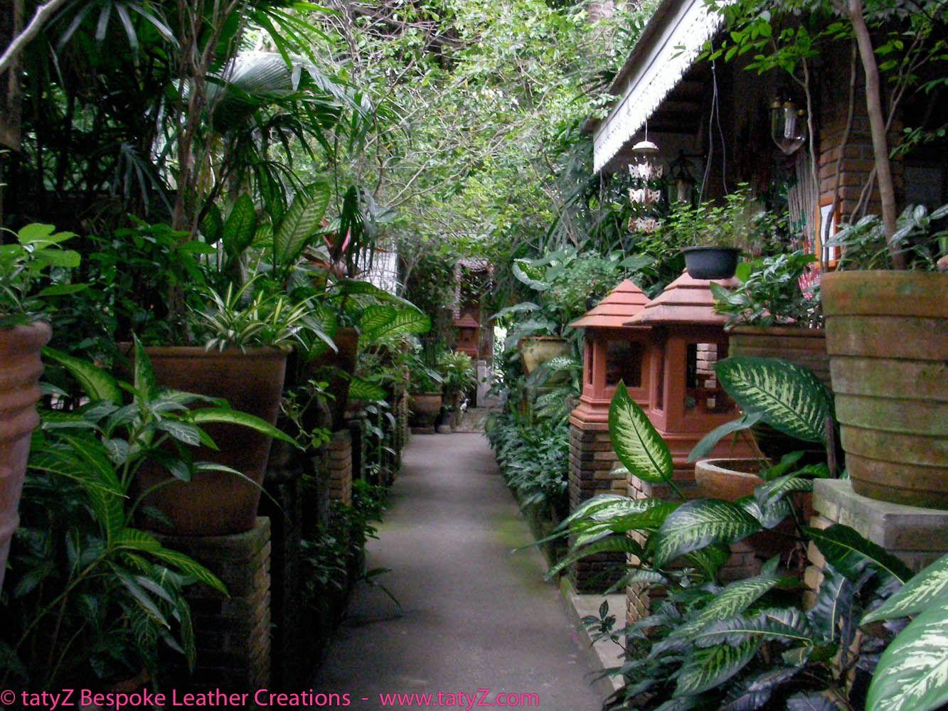 idee jardin exotique volume pot plantes