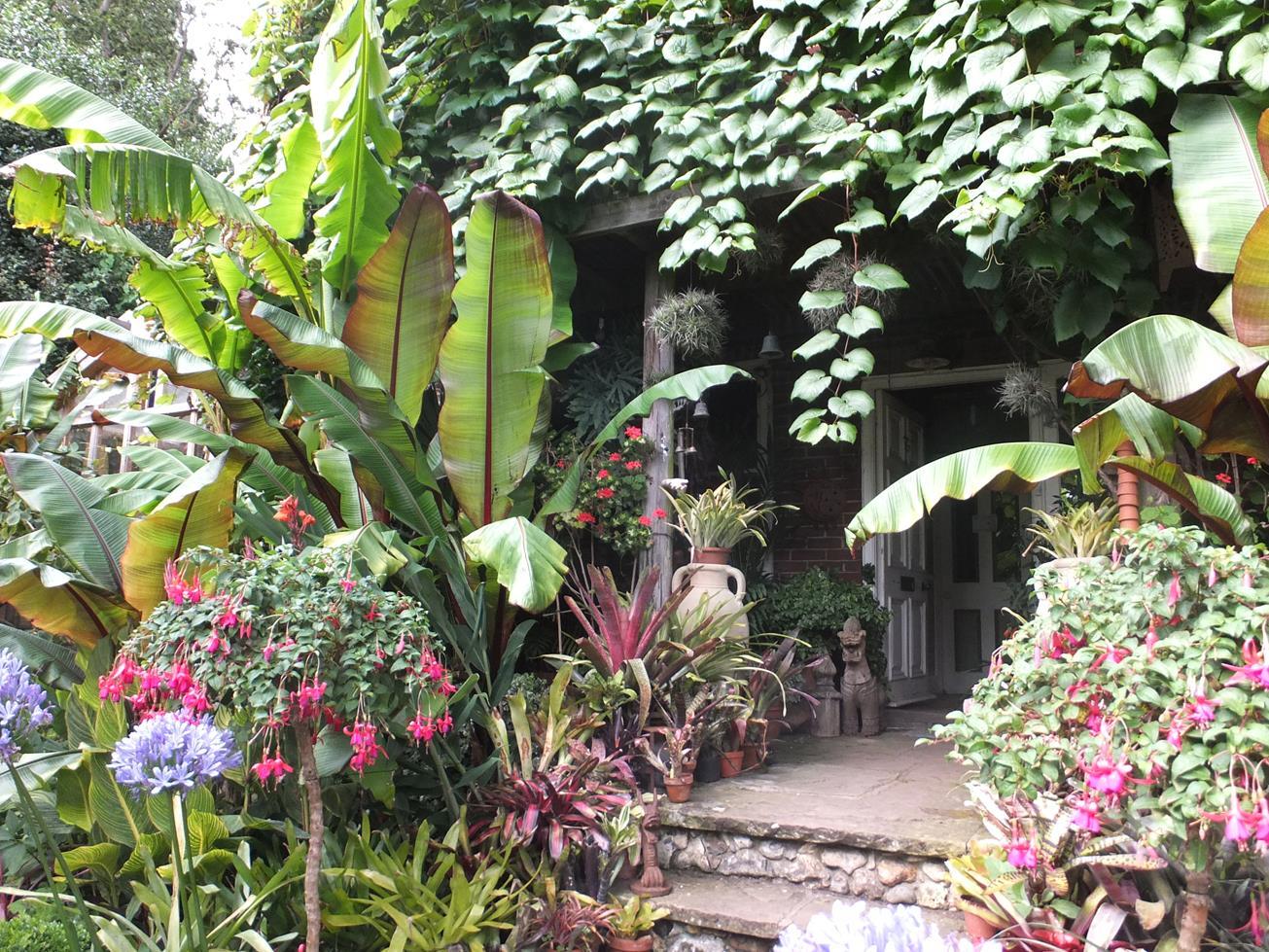 joli jardin exotique idee plantes verte et fleur