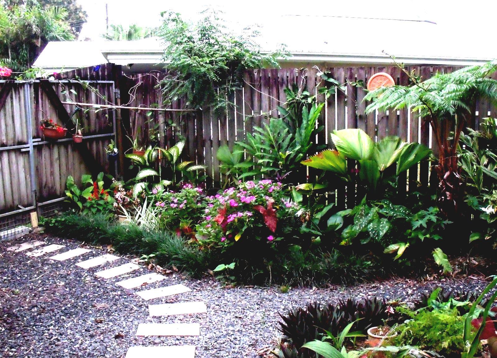 parterre decoration plante exotique