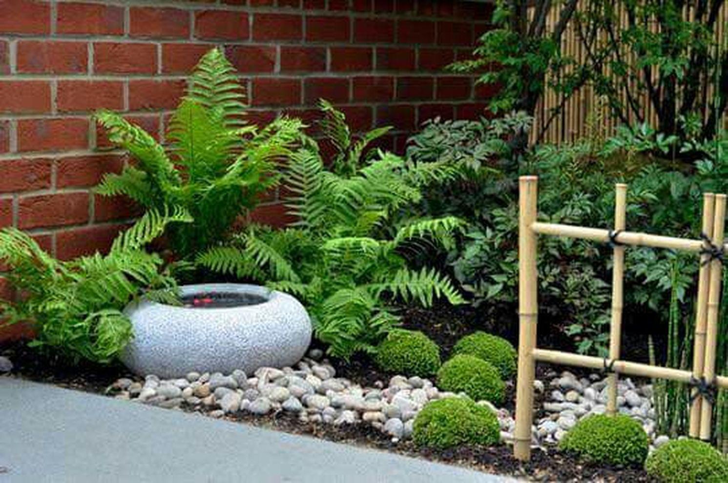 petit bassin et vegetation jardin