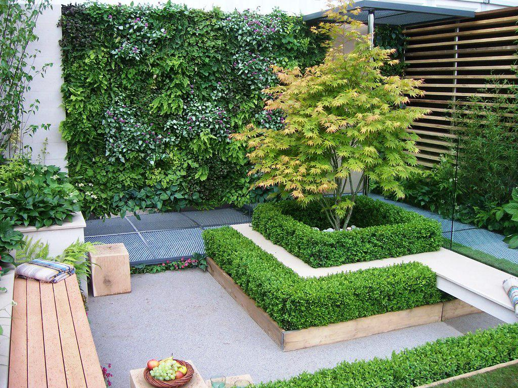 plante et volume deco jardin minimaliste