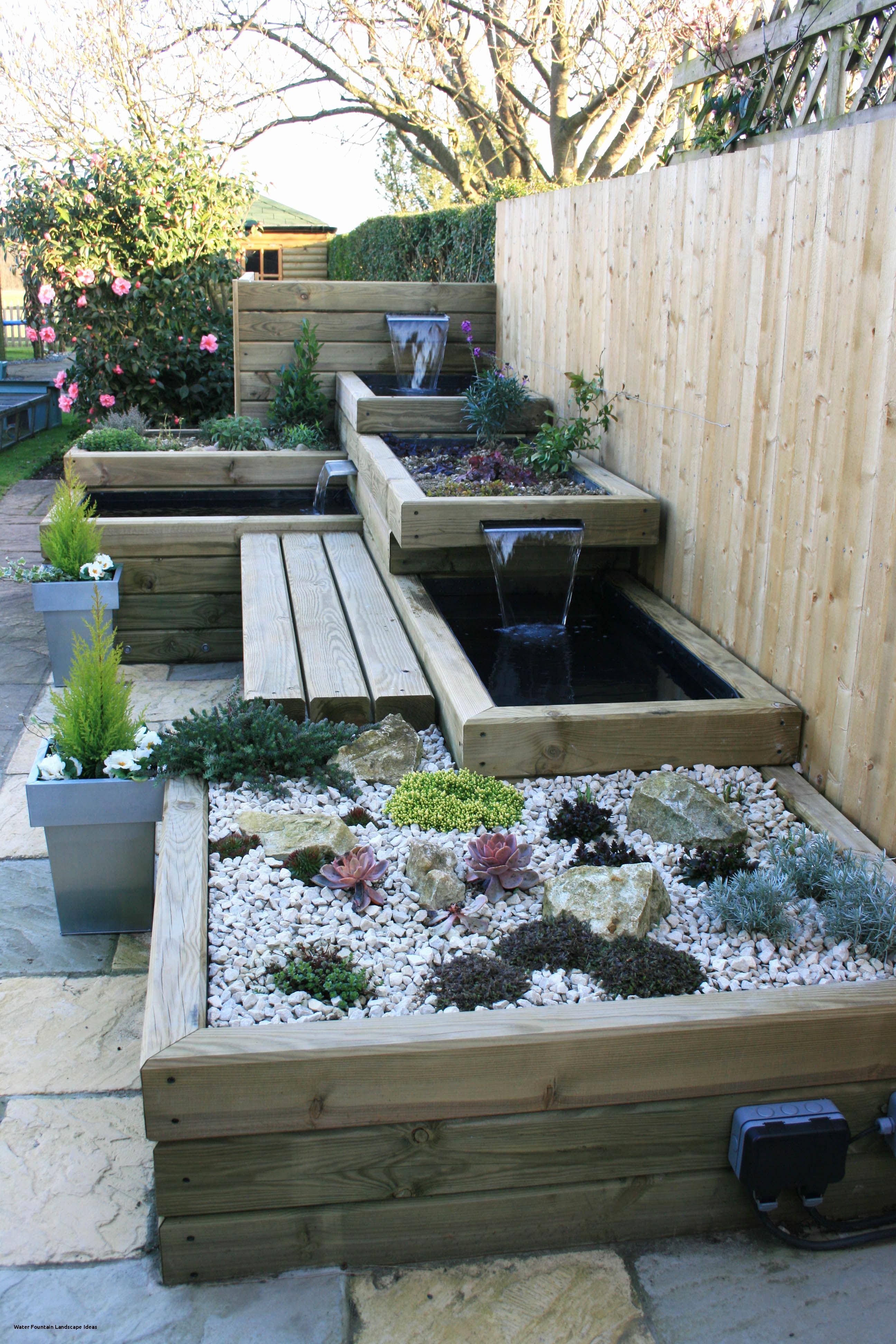 succession bassin bois jardin
