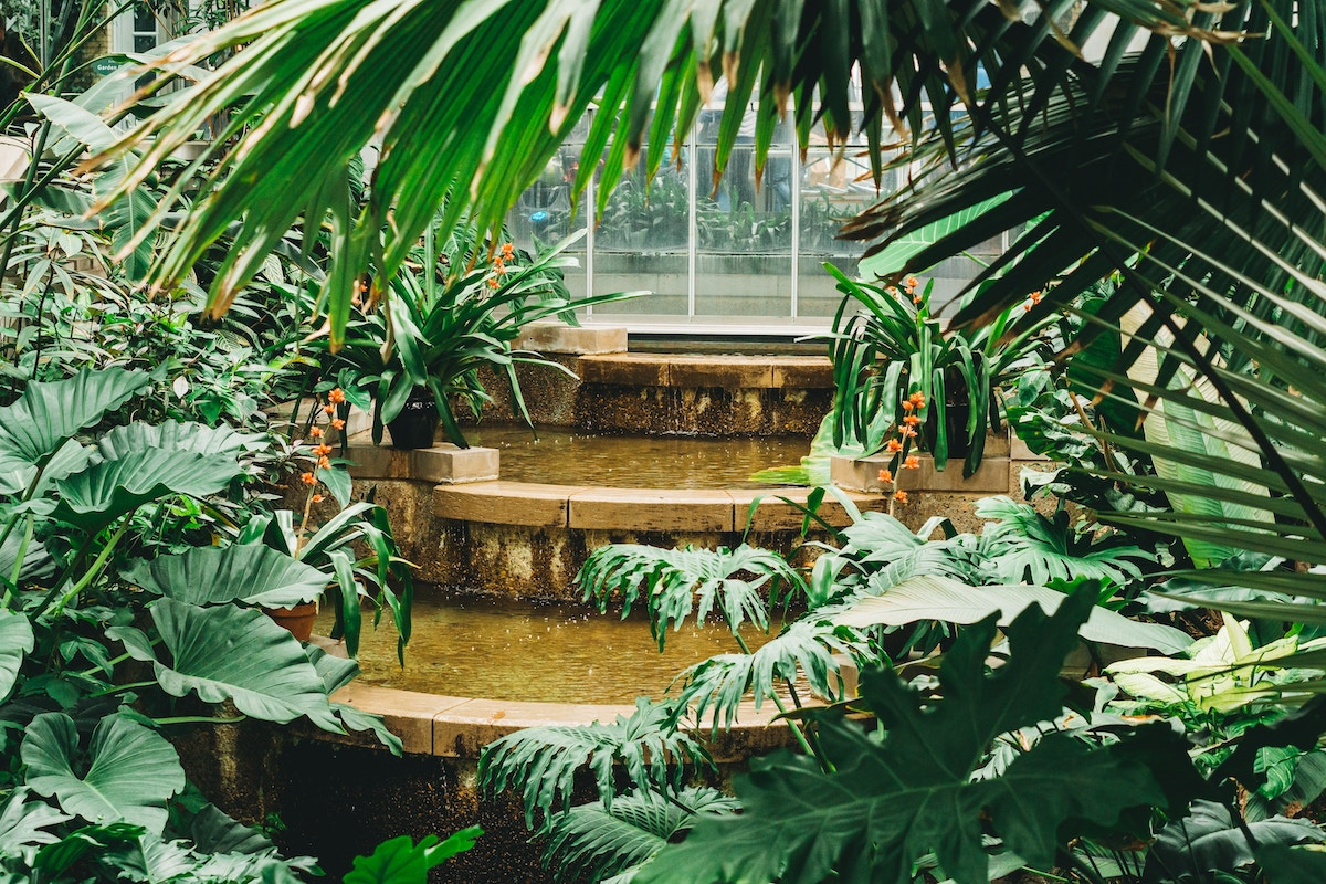 fontaine deco jardin entretien