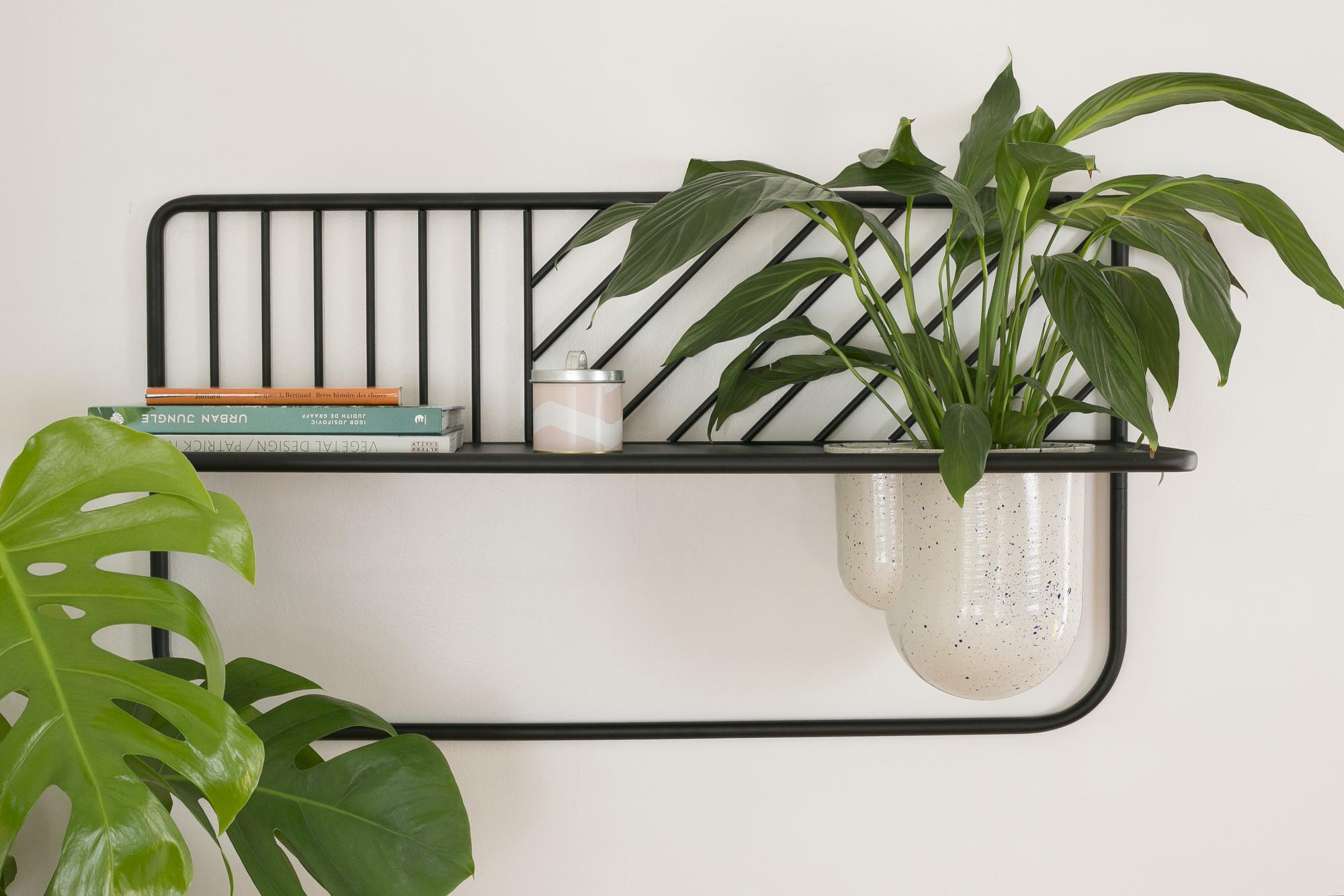 idee deco murale plante et meuble
