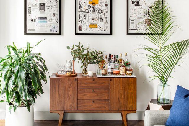 plante et meuble mid century