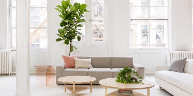plantes table basse ronde en bois