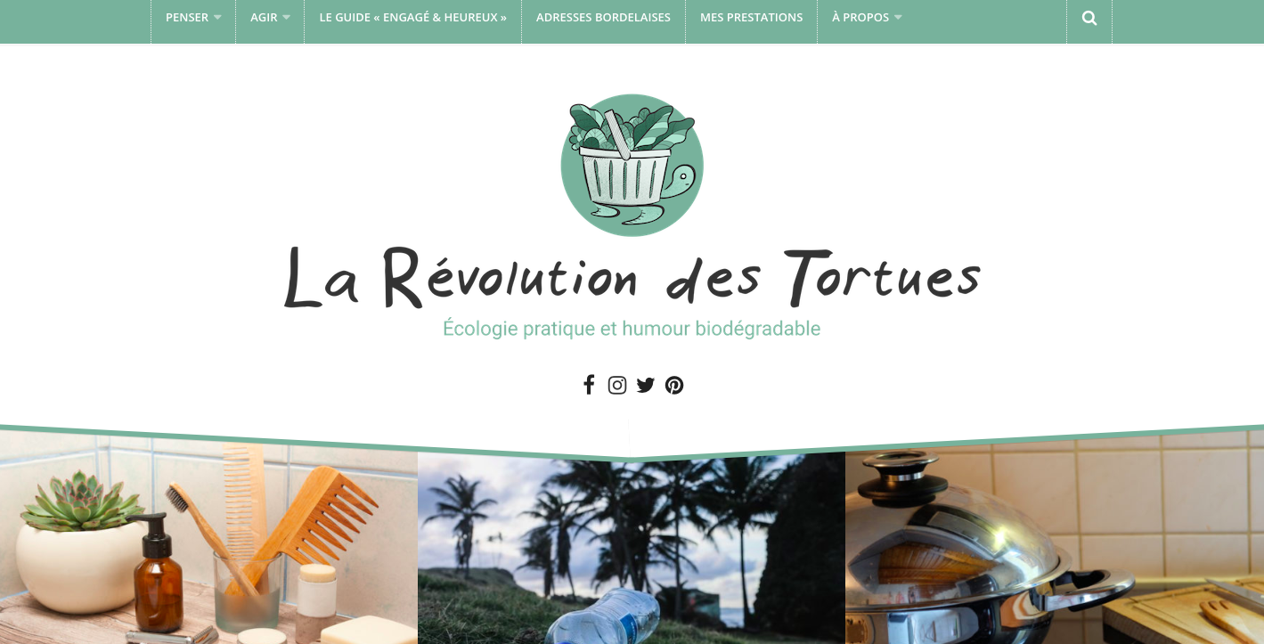revolution des tortues blog green et slow
